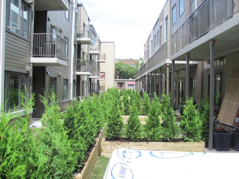 Appartements locatifs chemin Ste-Foy